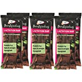 Lactation Protein Bars, 6 bars, Chocolate Brownie Oats Wholesome Alternative to Lactation Cookies. Yummy Lactation Supports Milk Supply during Breastfeeding Wholesome (Chocolate Brownie)