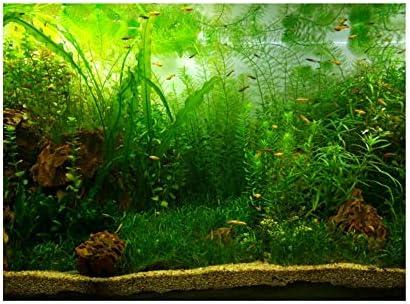 Cartel de Fondo de Tanque de Peces de Acuario Papel Adhesivo de PVC Decoración Papel Verde Agua Estilo Acuático como Real 2