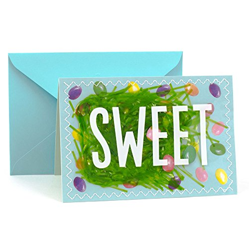 Hallmark Signature Easter Greeting Card (Jelly Beans and Grass)