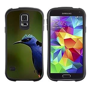 Suave TPU GEL Carcasa Funda Silicona Blando Estuche Caso de protección (para) Samsung Galaxy S5 / CECELL Phone case / / blue bird colorful nature spring summer /