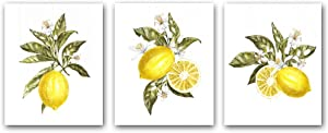 "3 Set- Cool Lemon Fruit Art Print - Yellow Orange Pear Lemon Botanical Canvas Wall Art -Green leaf Sour lemon Poster Perfect for Dining Room Kitchen Decoration (Unframed,8""X10"")"