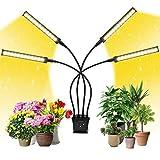 Grow Light, EZORKAS Full Spectrum Indoor Plant Grow