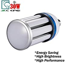 LED Corn Bulb, Gianor 30W E26/E27 LED Street Light Replace 100W Metal Halide Bulb,6000K Day White for Street Lamp Post Lighting Garage/Factory/Warehouse/High Bay/Porch/Backyard(Milky Cover)