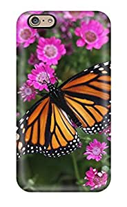 Iphone 6 Hard Back With Bumper Silicone Gel Tpu Case Cover Butterfly Closeup