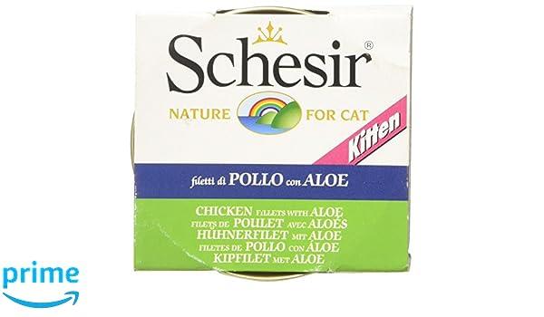 Schesir Gato 85 gr Kitten Pollo con Aloe: Amazon.es: Productos para mascotas