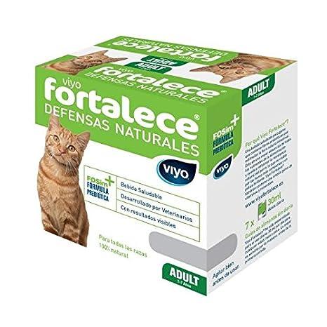 VIYO FORTALECE complemento nutricional para Gatos: Amazon.es: Productos para mascotas