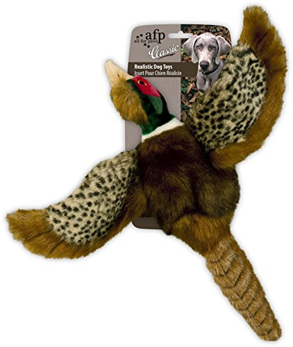 All for Paws Classic Pheasant Pet Toys, Small