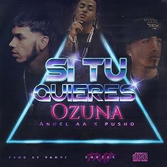 Amazon.com: Si Tu Quiere (feat. Pusho) [Explicit]: Ozuna ...