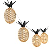 Pineapple String Lights, 10ft 30 LED Fairy String Lights Battery Operated for Christmas Home Wedding Party Bedroom Birthday Decoration (Warm White)