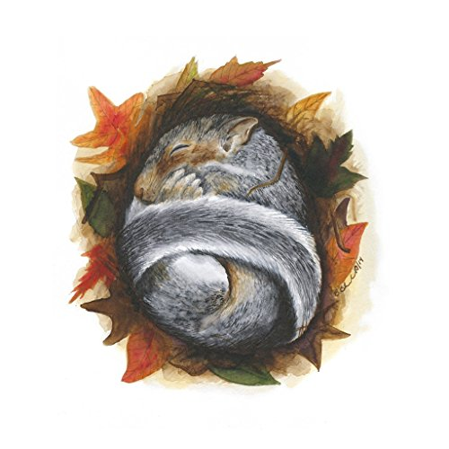 Baby Squirrel Watercolor Print, Woodland Nursery, Fall Foliage, Baby Animal Art - Orange, Green, Red
