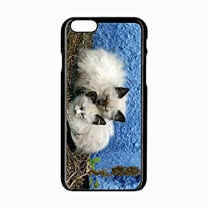 iPhone 6 Black Hardshell Case 4.7inch kittens background Desin Images Protector Back Cover