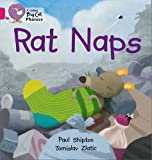 Rat Naps