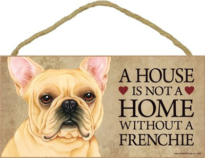 french bulldog dozen - 1