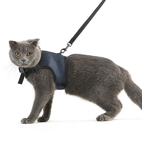 Niteangel 2-Pack of Adjustable Cat Harness with Elastic Leash (M & L, Royal Blue) by Niteangel