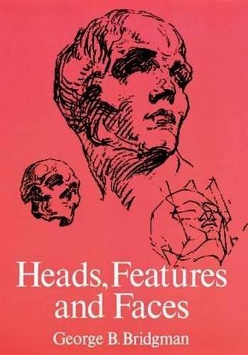 head drawing and anatomy - 3