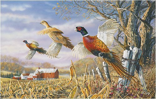 Terry Doughty High Field Flush Jigsaw Puzzle 1000pc by SunsOut