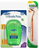 Dentek Deep Clean Bristle Picks Mint 250 Count (2 Pack), FREE Gum Stimulator Included
