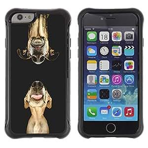 LASTONE PHONE CASE / Suave Silicona Caso Carcasa de Caucho Funda para Apple Iphone 6 / Dog Retriever Plott Muzzle Pet Art