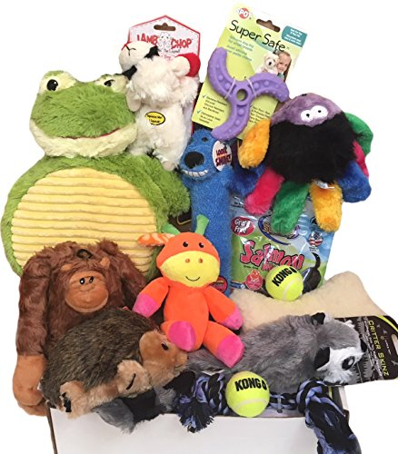 - ZamiZoo Woof! Doggie Gift Box with Treats and Toys, For Puppies