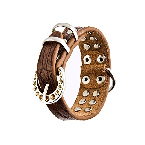 Xtra Large Dog Collar (Brown Leather Dog Collar with 2 Rows of Brown Rhinestones, Size Xtra Large)