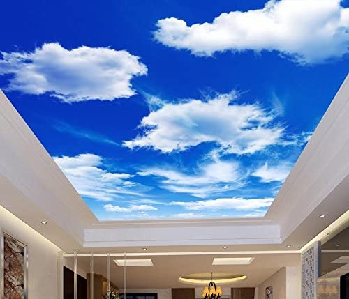 Lwcx Custom 3d Ceiling Murals The Blue Sky And White Clouds