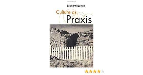 Culture as praxis published in association with theory culture culture as praxis published in association with theory culture society zygmunt bauman 9780761959892 amazon books fandeluxe Gallery