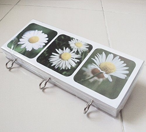Agility Bathroom Wall Hanger Hat Bag Key Adhesive Wood 3 Hooks Vintage White Daisy Flower's (Flowers Red Hat Gift Bag)