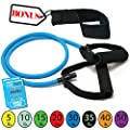 Tribe Single Resistance Bands Workout Bands Includes Single Exercise Band Cushioned Handles Door Anchor Advanced Ebook For Resistance Training Physical Therapy Home Workouts