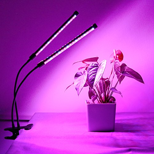 Review LED Grow Light Timing