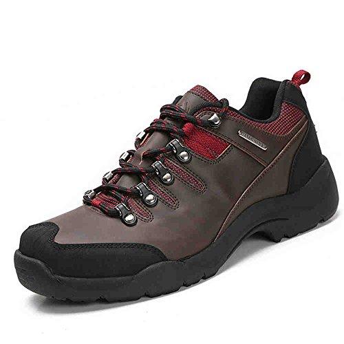 Nave nel deserto Men's-Scarpe da escursionismo, colore: marrone scuro, EUR45)