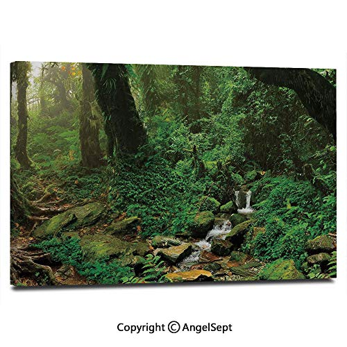 Modern Gallery Wrapped Rainforest Trees and Fresh Grass in Nepal Jungle Wildlife Nature Tropical Photo Pictures on Canvas Wall Art Ready to Hang for Living Room Kitchen Home Decor,12