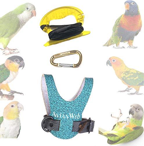 Avianweb Dazzling Sea Green Bird Harness (6)