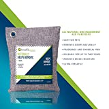 Breathe Green Bamboo Charcoal Odor Eliminator Bag