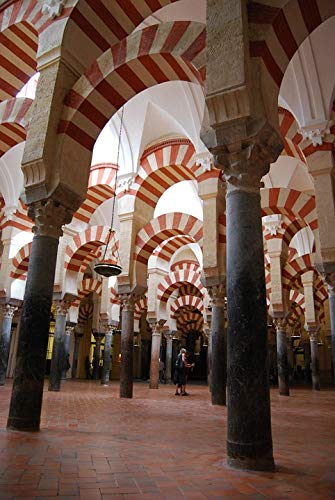 (Home Comforts Laminated Poster Columns Andalusia Spain Cordoba Archi Mosque Vivid Imagery Poster Print 24 x 36 )