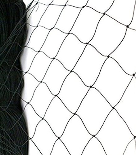 BEST BIRD NETTING 14 x 45 ft Bird Net - Smart Way to Protect Fruit Trees, Bushes & Vegetables from Hungry Birds, Garden Netting Protects Gardens from Chickens & Poultry (Furniture Garden Obelisk)