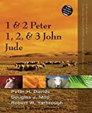 img - for 1 and 2 Peter, Jude, 1, 2, and 3 John (Zondervan Illustrated Bible Backgrounds Commentary) book / textbook / text book