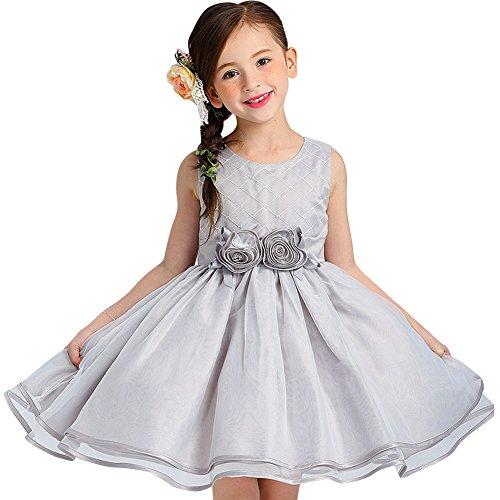 Niñas Vestido de Princesa Fiestas Boda Vestidos de Noche Gris 150: Amazon.es: Ropa y accesorios
