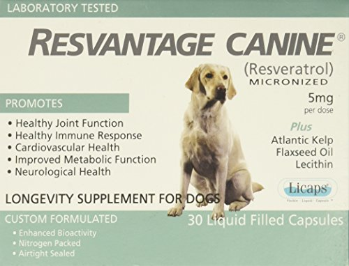 Resvantage Canine by Pet Supplies Online