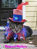 Uncle Sam hat and Stars n Stripes party collar (x-small (6-10″ collar)), My Pet Supplies