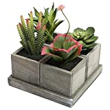 Set of 4 Realistic Artificial Mixed Succulent Plants with Rustic Brown Wood Planter Pots & Square Tray