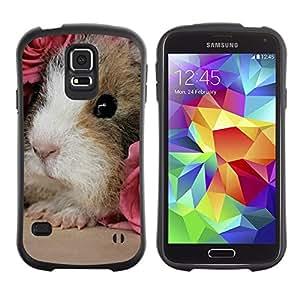 "Pulsar iFace Series Tpu silicona Carcasa Funda Case para Samsung Galaxy S5 , Hamster Guinea Pig Roedor Pink Roses lindo"""