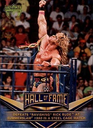 Amazon com: Wrestling Wrestling 2018 Topps WWE WWE Hall of