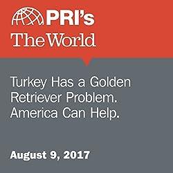 Turkey Has a Golden Retriever Problem. America Can Help.