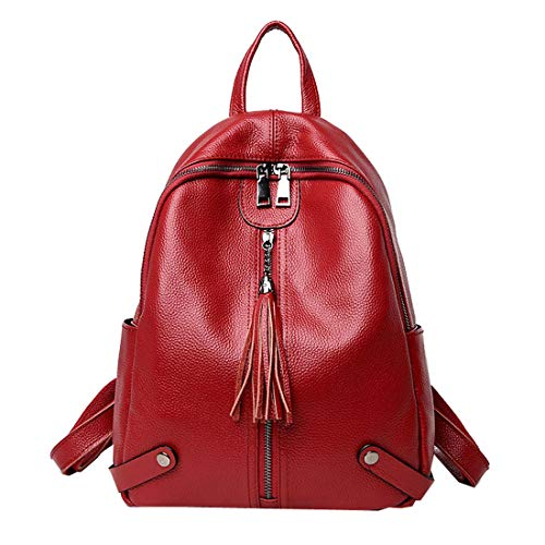 Heshe Women Leather Backpack Casual Daypack School Bag for Ladies and Girls (Wine)