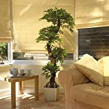 Large Artificial Japanese Fruticosa Tree, Luxury Stylish Handmade Using Real Bark Replica Fake Indoor Plant - 5ft 4 Inches/165cm Tall. Perfect for Home, Office, Conservatory, Hotel, Restaurant, Balcony, Patio, Summer House