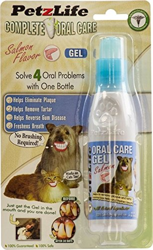 Complete Oral Care (PETZLIFE 891016 Complete Oral Care Gel Salmon Blister-Package for Pets, 4-Ounce)