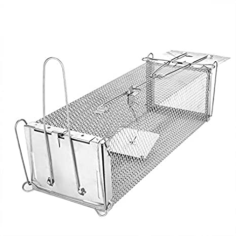 Amazon.com: 13 3 Inch - Pest Traps Animal Humane Trap Catch ...