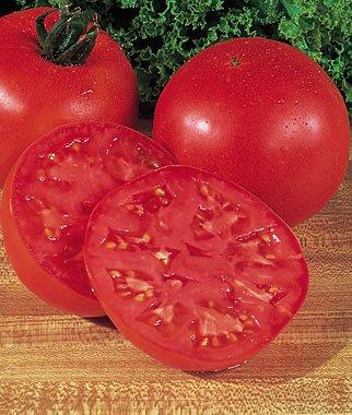 Burpee Tomato Big Boy Hybrid Seed