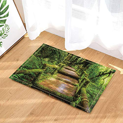 Tropical Rainforest Decor Wooden Bridge Full with Moss in National Park Bath Rugs 15.7x23.6 inch Kitchen Bedroom Front Bathroom mat Fittings