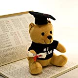 DishyKooker Dr. Bears Creativo Regalo di Laurea Doctorial Cappello Orso di  Peluche Giocattolo 20 cm 25742f0ac5bb